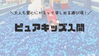 ピュアキッズ入間サイオス店(埼玉の子供遊び場)